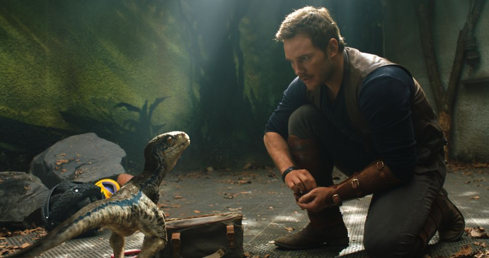 "Owen (Chris Pratt) with a baby Velociraptor in ""Jurassic World: Fallen Kingdom."" Universal Studios and Amblin Entertainment, Inc. and Legendary Pictures Productions, LLC."
