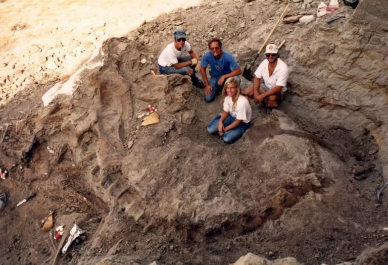 Paleontologist Peter Larson, his team from the Black Hills Institute, and paleontologist Sue Hendrickson and their August 12, 1990 discovery of one of the largest and most complete Tyrannosaurus Rex skeletons… Sue.