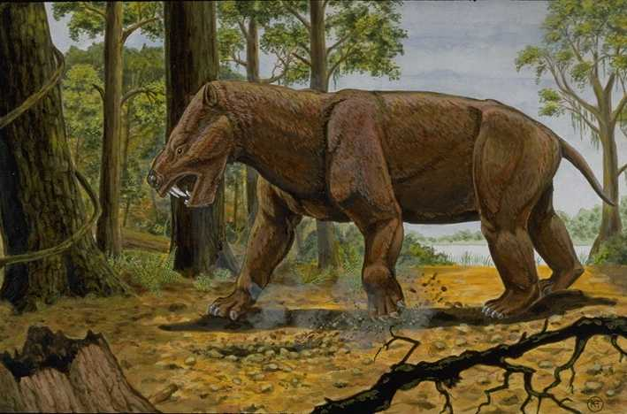 Pantodonts, uintatheres and xenungulates: The first large herbivorous mammals. By Kelly Taylor