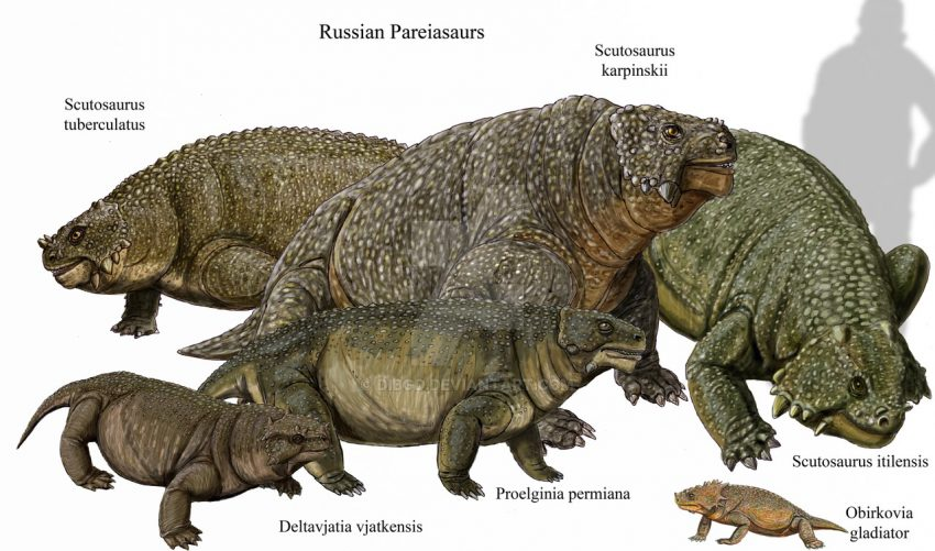 Reptiles Who Ruled the Earth Before Dinosaurs Expected to Bring More Tourists to Russia
