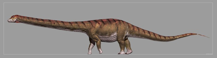 Patagotitan reconstruction by Jorge Gonzalez