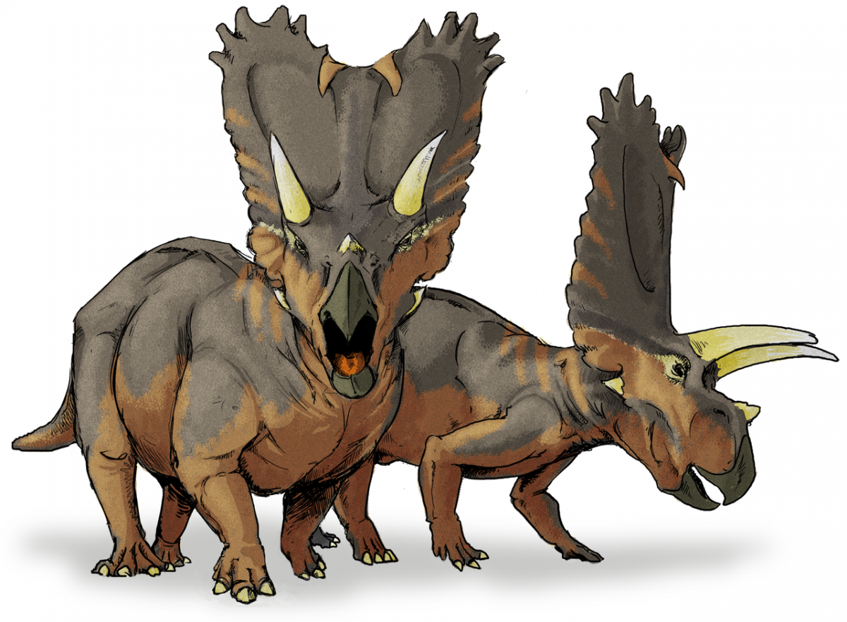 Life restoration of ceratopsid specimen OMNH 10165, classified as the species Titanoceratops ouranos. A ceratopsid genus from the Late Cretaceous Period Kirtland or Fruitland formation (Willow Wash Fauna, Kirtlandian age) of what is now New Mexico by LadyofHats