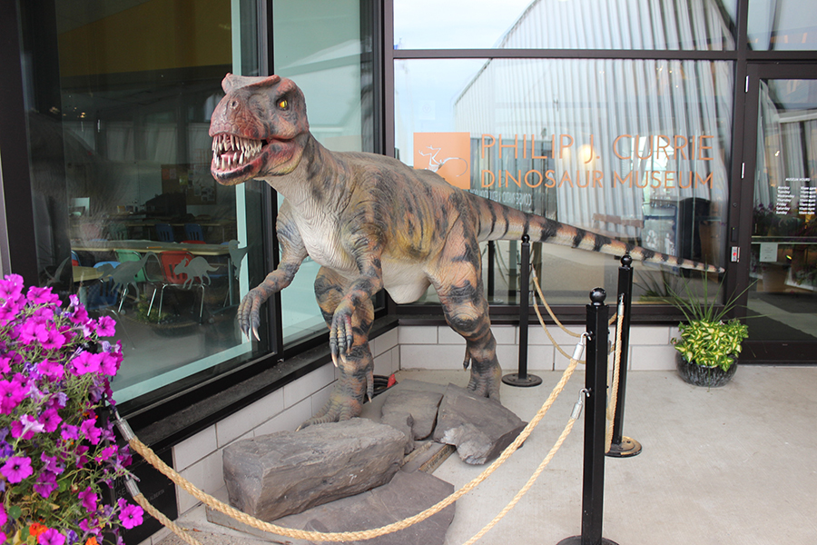 Philip J. Currie Dinosaur Museum in Wembley, Emma Mason
