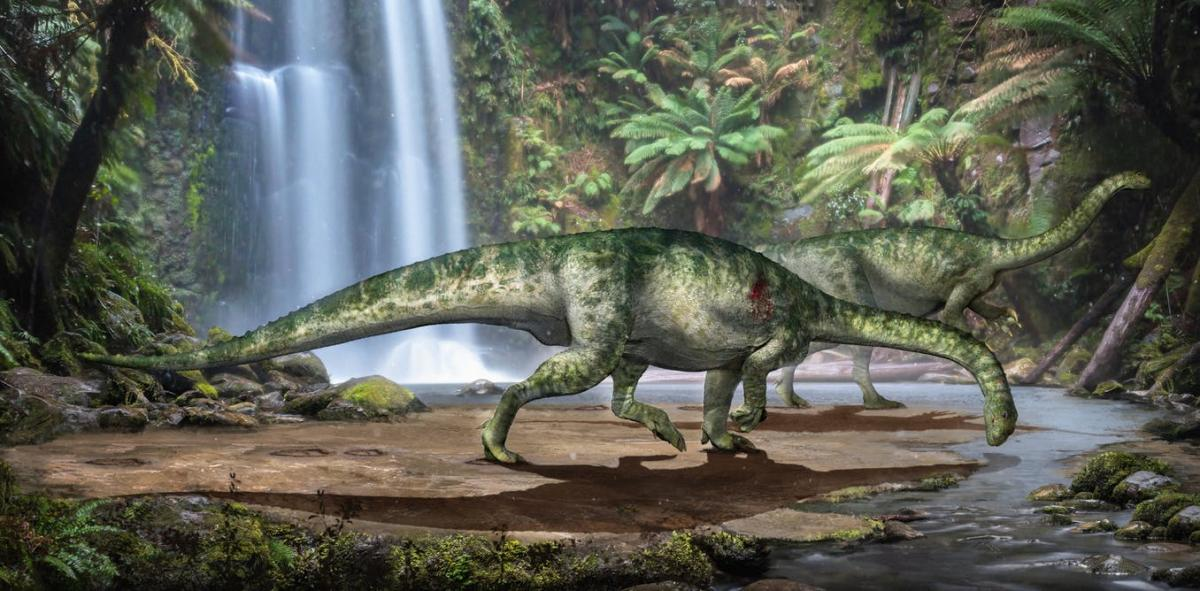 Reconstruction of the bite wound affecting the shoulder of our herbivorous dinosaur. Zongda Zhang/Lida Xing, CC BY-SA