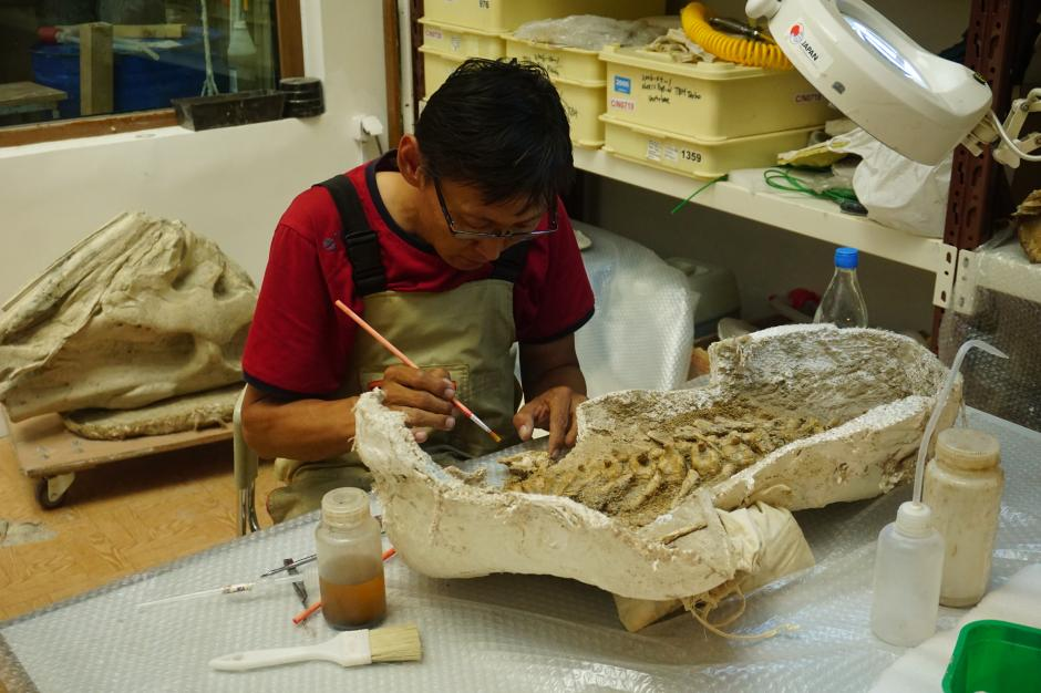 Researchers at the Mongolia Institute of Paleontology examining a fossil from the Gobi. KESHIA NAURANA BADALGE