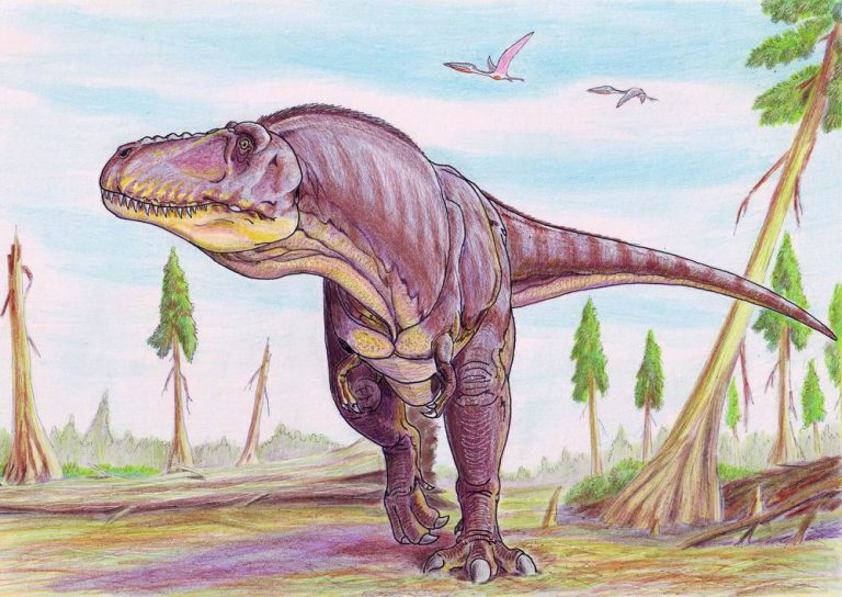 Restoration of Tarbosaurus in Late Cretaceous Mongolian environment by Dimitri Bogdanov