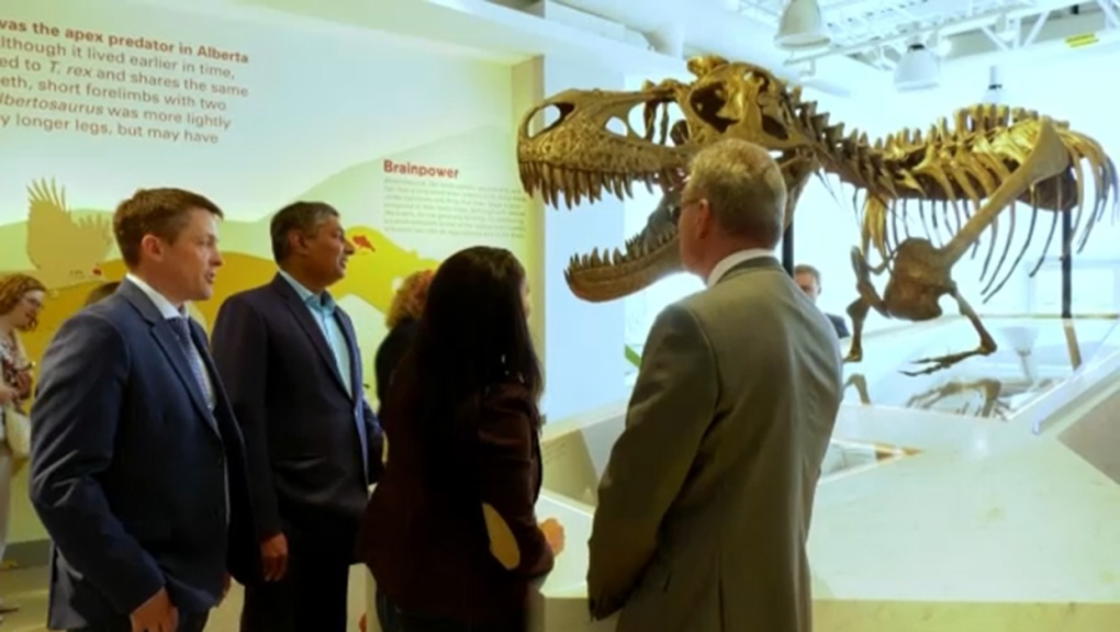 Royal Tyrrell Museum unveils learning lounge with life-sized Albertosaurus skeleton | CTV News