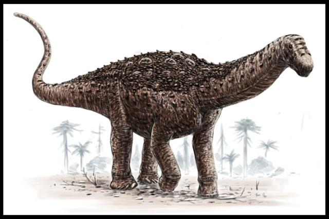 Saltasaurus, from which Argentinosaurus was reconstructed (Alain Beneteau).