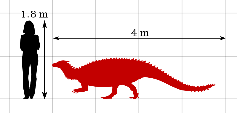 Scelidosaurus Size Comparison by PaleoGeek