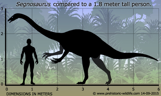 Segnosaurus by PrehistoricWildlife.com