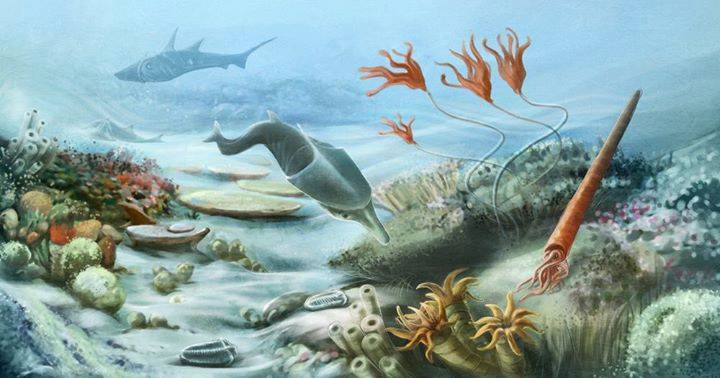 Underwater life thrived during the Silurian Period, 443 million years ago to 416 million years ago. Credit: Alena Hovorkova
