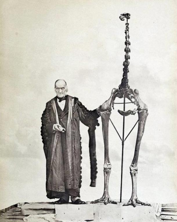 Sir Richard Owen standing next to a moa skeleton and holding the first bone fragment belonging to a moa ever found. (public domain)