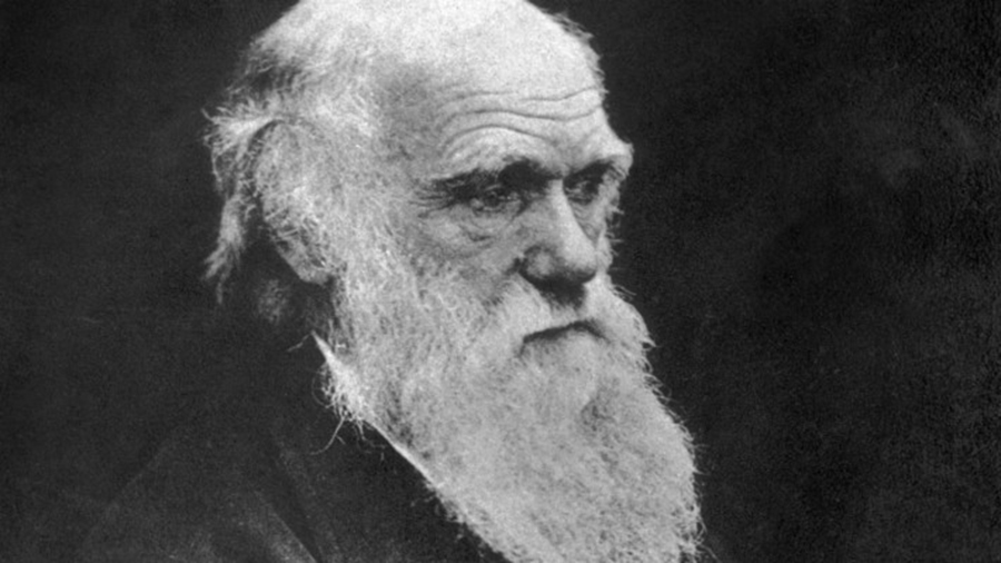 Spencer Arnold Collection/Hulton Archive/Getty Images Charles Darwin published his book On the Origin of Species in 1859