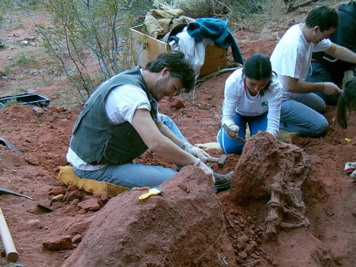 Study lead researcher Juan Porfiri (left) and students excavate vertebrae of the newly discovered dinosaur Tratayenia rosalesi at the Tratayén site in Neuquén Province, Patagonia, Argentina. Credit: Photo courtesy Juan Porfiri/Universidad Nacional del Comahue