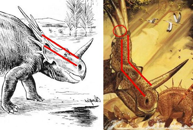 "LEFT: an outdated (and rather ugly) restoration of Styracosaurus based on the crushed skull, with the incline of the snout and frill shown in red along the skull roof line and the nostril line. Also, notice how the dino is straining to cover its back with that frill like a turtle retracting its head into its shell. Yet the very fact that the frill was mostly filled with soft tissue made it useless as armor - it was primarily a display device! I doubt the animal could even hold its neck in such a strained position. The artist is a ""C. Douglas"", a name which does not ring any bells. Sadly, most dinosaur books show Styracosaurus in a similar ""duck-and-cover"" position."