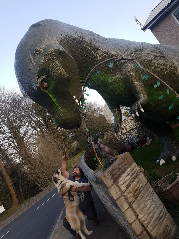 The 58-year-old installed the dinosaur in his front garden in Cwmbran (Image: Samantha Adams)