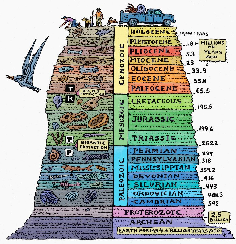 The Geological Time Scale: Timeline of Life on Earth