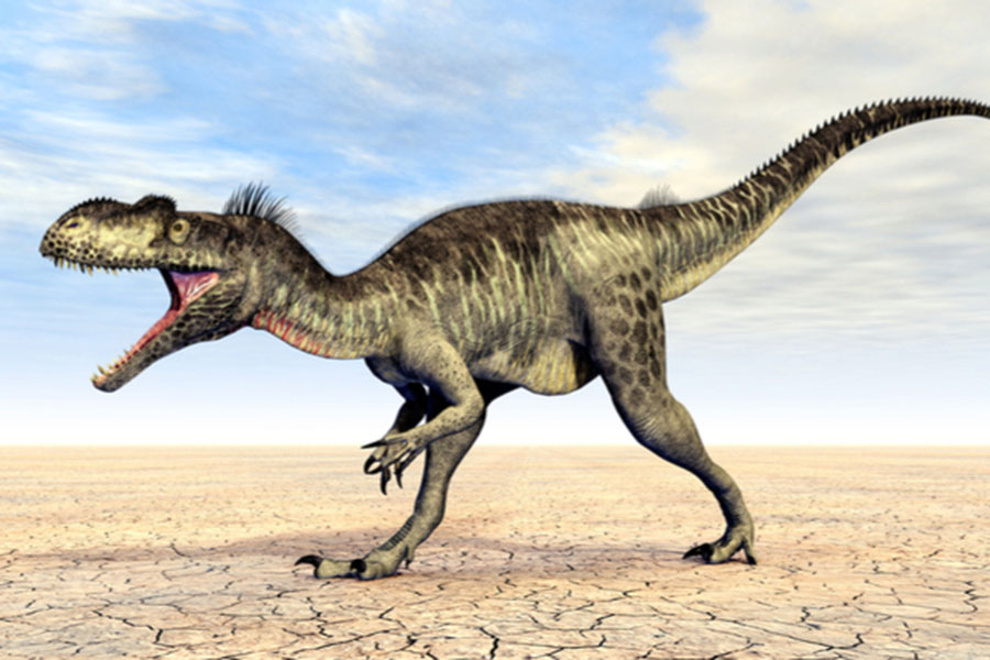 The Megalosaurus was the first dinosaur to be officially named, following its discovery in Oxfordshire in 1824 (Image: Shutterstock)