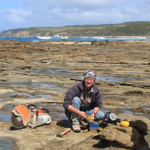 The late David Pickering on the coastal shore-platform near the fossil vertebrate locality of Eric the Red West, where Diluvicursor pickeringi was discovered. Credit: Matt Herne