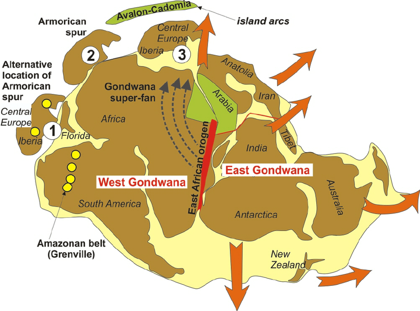 The Gondwana supercontinent after amalgamation of West and East Gondwana