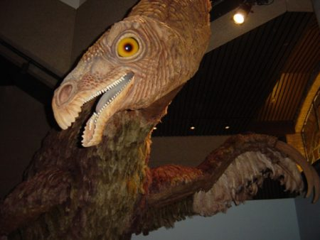 Therizinosaurus model, Royal Ontario Museum. Author: Aaron Gustafson
