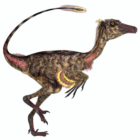SMARTEST DINO: Troodon was a small carnivorous dinosaur (Pic: GETTY)