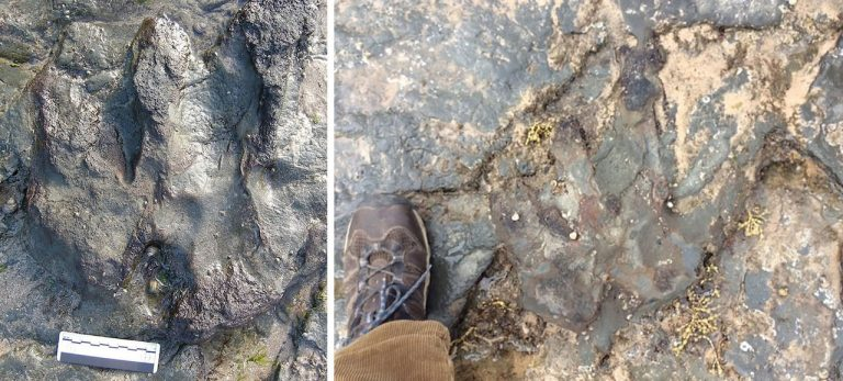 "Vandals took a hammer to the ancient dinosaur footprint in Australia, with officials slamming the ""sad and callous"" act CREDIT: AFP"