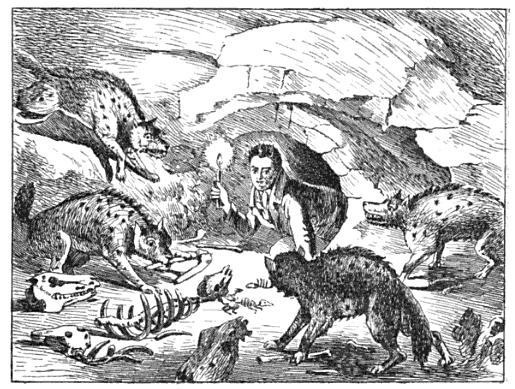 William Conybeare drew this cartoon of Buckland poking his head into a prehistoric hyaena den in 1822 to celebrate Buckland's ground breaking analysis of the fossils found in Kirkdale Cave.