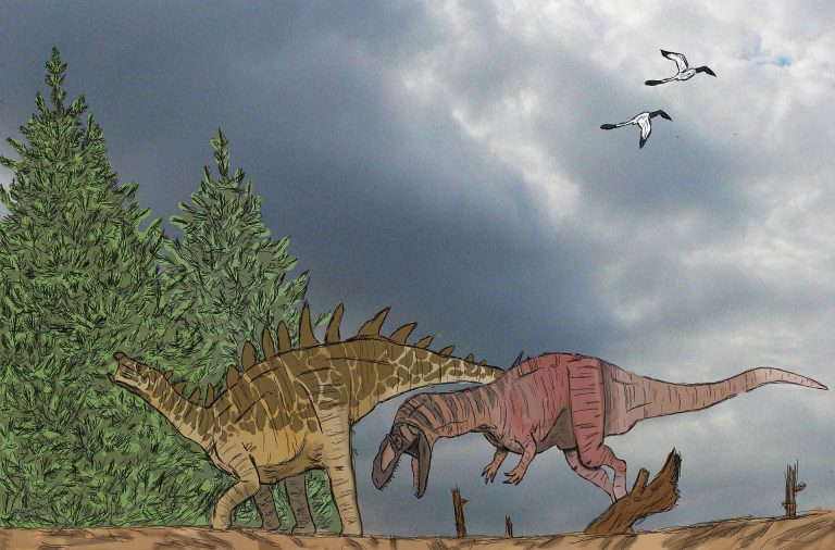 Yangchuanosaurus attacking Tuojiangosaurus. Author: Foolp