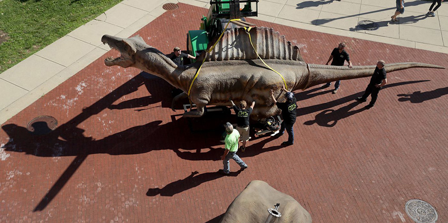 A 40-foot-long animatronic Spinosaurus is hoisted into place outside The Academy of Natural Sciences on June 26, 2019 in Philadelphia, PA. DAVID MAIALETTI / STAFF PHOTOGRAPHER