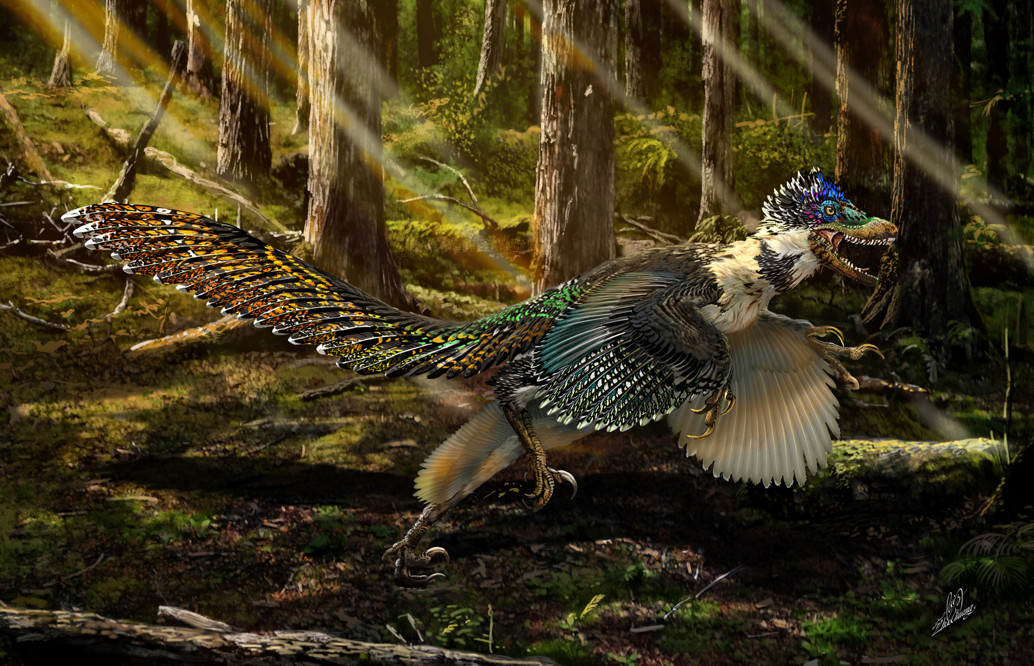 A RESTORATION OF ZHENYUANLONG IN A CRETACEOUS FOREST. Art: Zhao Chuang