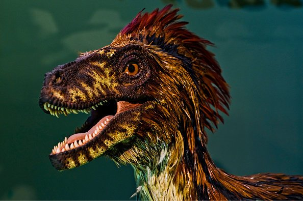 STRANGE CREATURE: Feathered dinosaur model in the Vienna Natural History Museum (Pic: GETTY)