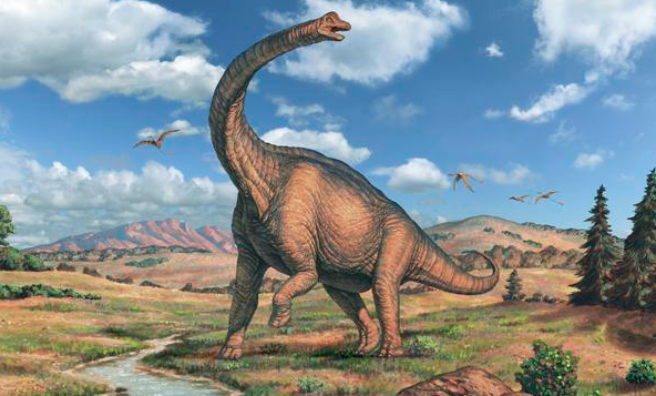 HUGE: Sauropods were the largest creatures ever to walk to the Earth. GETTY