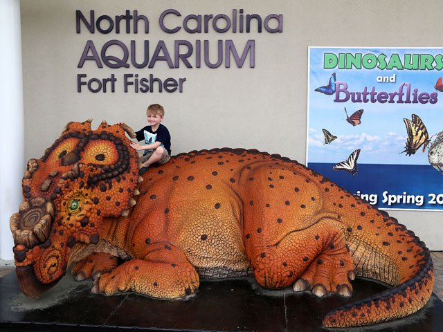 NC Aquarium Fort Fisher