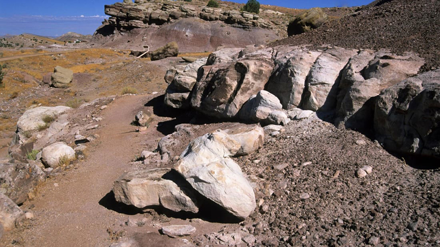 An easy loop hike around Dinosaur Hill marks the site where a 70-foot, 30-ton Apatosaurus was excavated. Alamy