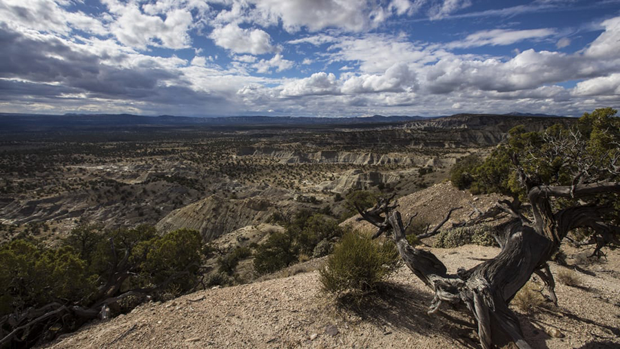 Over the past 20 years, the Kaiparowits Plateau has yielded some of the most remarkable paleontological discoveries in Grand Staircase-Escalante National Monument. Brian van der Brug/Los Angeles Times/Getty Images