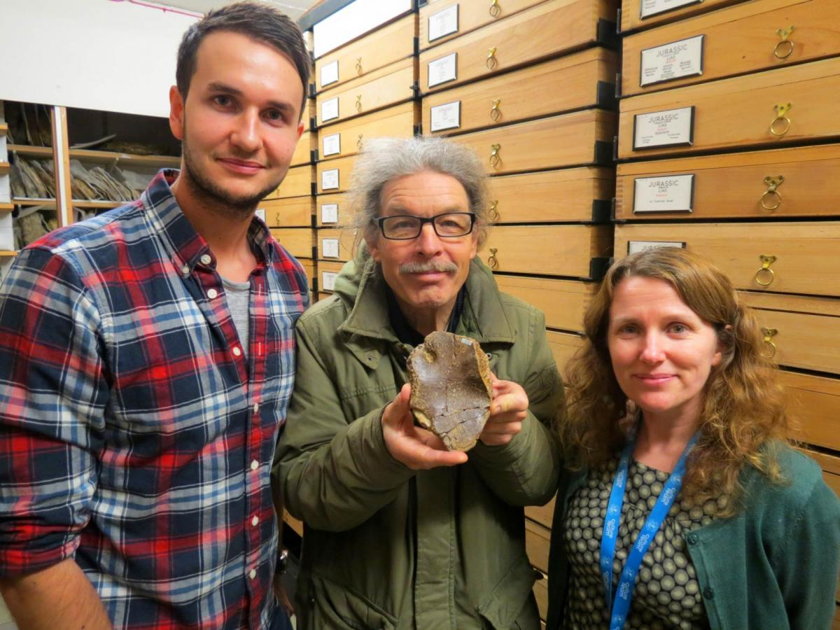 Photograph of Dean Lomax (left), Simon Carpenter (middle) and Deborah Hutchinson with the new specimen of Wahlisaurus massarae. Image credit: University of Manchester.