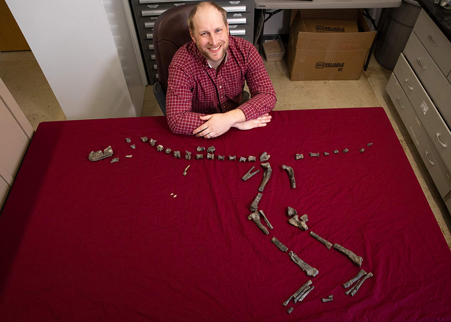 Dr. Sterling Nesbitt and the partial skeleton of Suskityrannus hazelae, which he found at age 16 in 1998. Image credit: Virginia Tech.