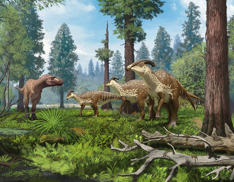 A group of Parasaurolophus cyrtocristatus being confronted by a tyrannosaurid in the subtropical forests of New Mexico 75 million years ago. Image credit: Andrey Atuchin.