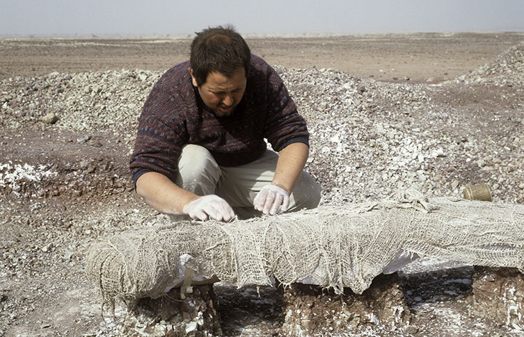 A sauropod bone in the Sahara Desert is wrapped in plaster and burlap in a process known as jacketing