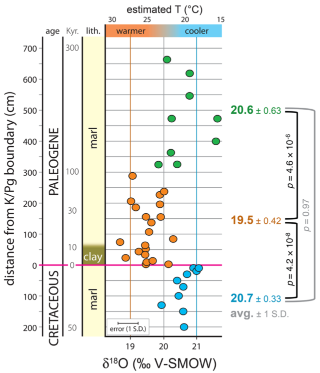 The oxygen isotope ratio records the change in temperature after the impact, which is marked by a clay layer. MacLeod et al/Science