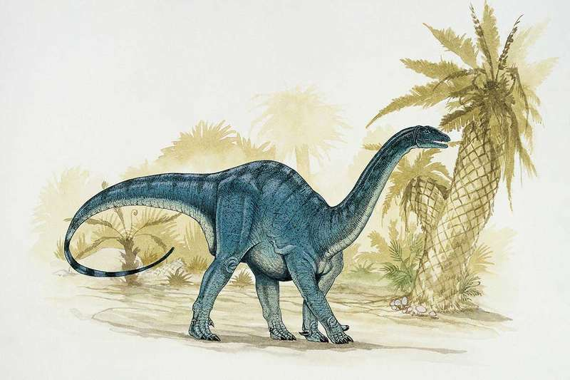 This dinosaur may have first walked on two legs DEAGOSTINI/UIG/SCIENCE PHOTO LIBRARY