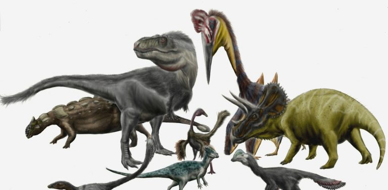 Dinosaurs by Durbet on DeviantArt