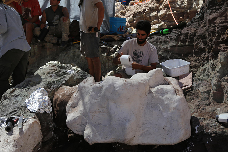 A researchers works on covering a chunk of rock containing bones in a protective jacket. The jackets are made of burlap, toilet paper, plaster, and tin foil, and protect the rock from being damaged in transport to Los Angeles. KATE GROETZINGER / KUER