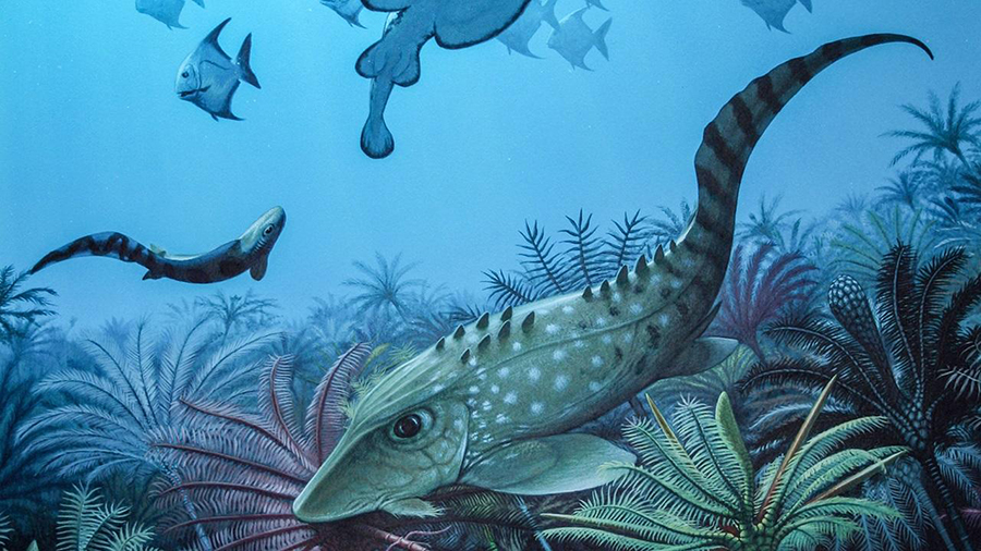 Ecosystems left in the wake of a mass extinction that occurred about 359 million years ago (artist's representation shown) contained fish and other vertebrates that were much smaller than the species that lived before the die-off, a new study suggests. ROBERT NICHOLLS