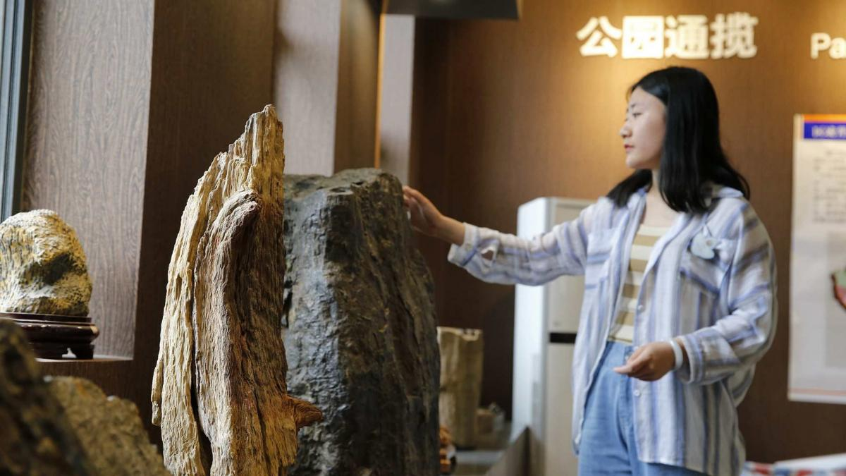 A national geopark featuring paleontological fossils in southwest China's Chongqing Municipality will open to the public on Saturday.