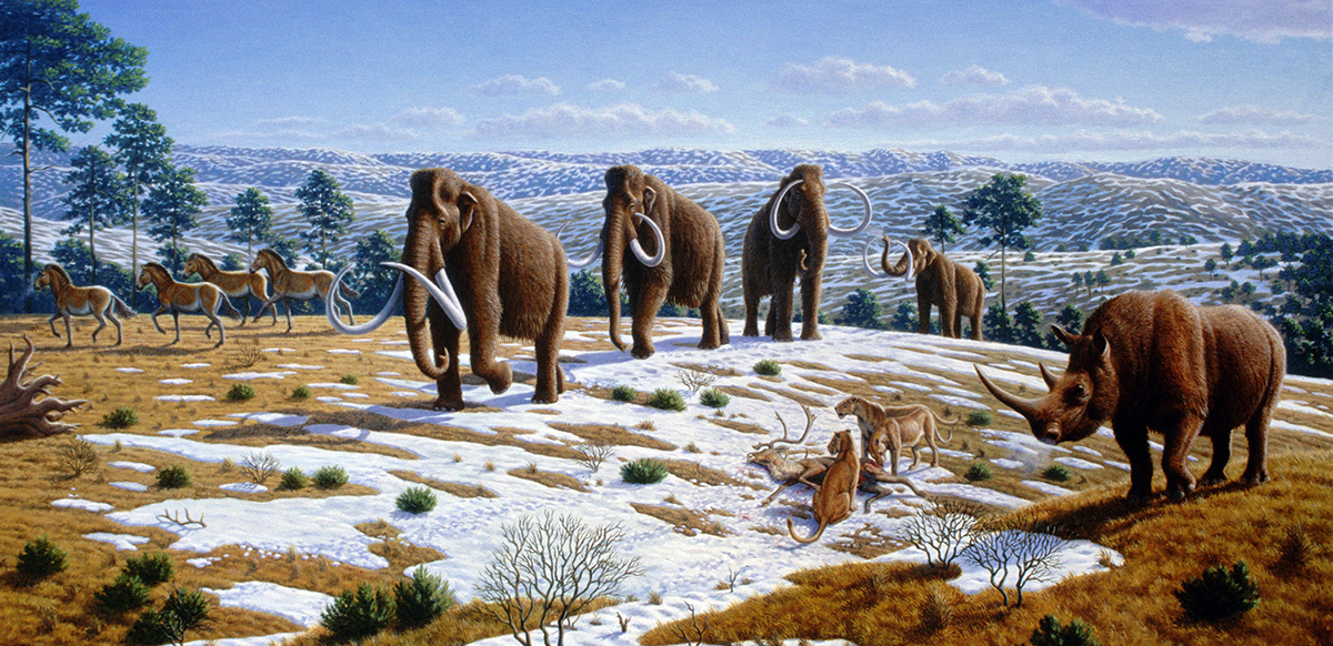 An artist's impression of an Ice Age ecosystem – similar to the one that Pleistocene Park is trying to recreate(Credit: Mauricio Antón/CC BY 2.5)