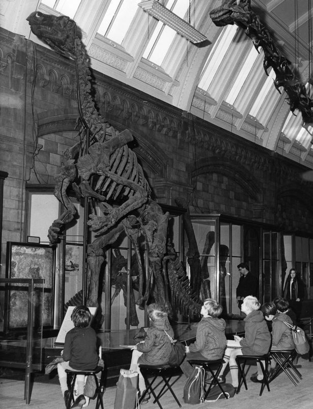 Children sketching a skeleton of the Iguanodon dinosaur at the Natural History Museum in 1970 (Image: Harry Todd/Fox Photos/Getty Images)