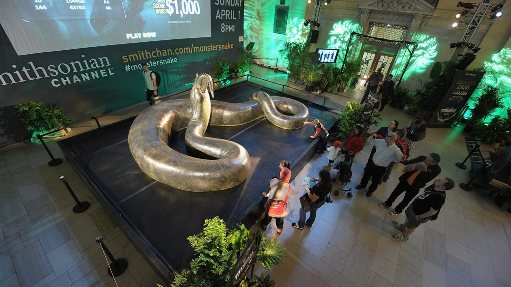 Life-sized model of Titanoboa devouring a dyrosaurid, from the Smithsonian exhibit