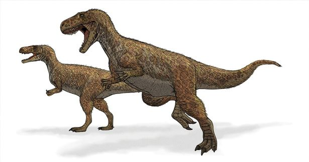 An artists impression of Megalosaurus (Image: Mariana Ruiz)